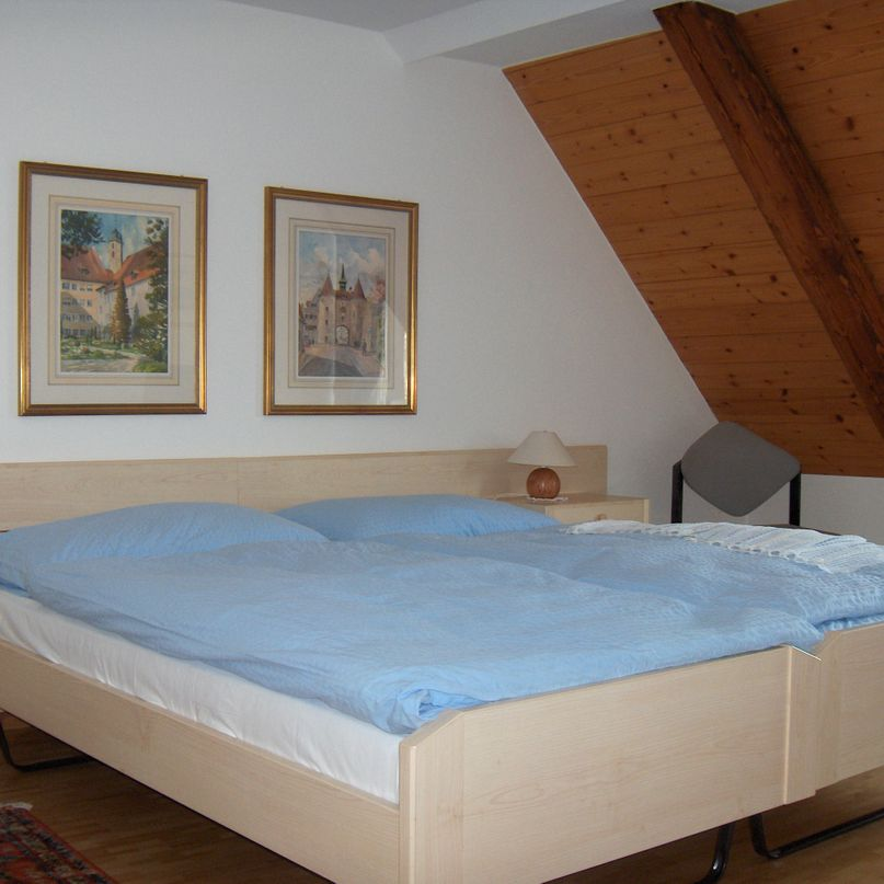 Hôtel Restaurant de la Cigogne - double bed